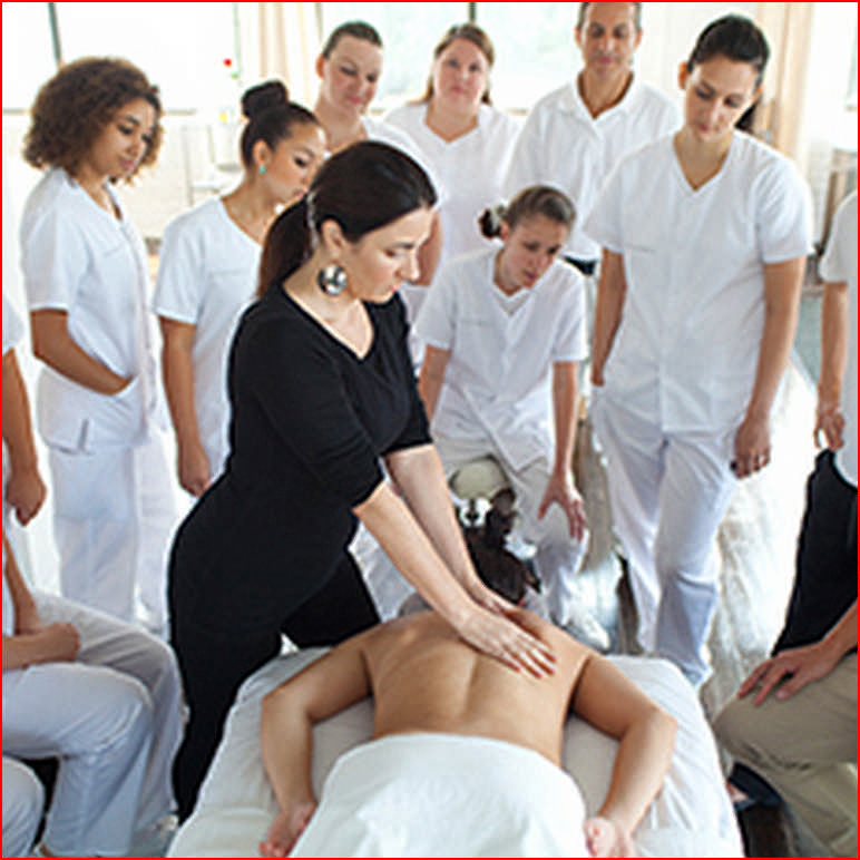 Schooling For Massage Therapists Near Me
